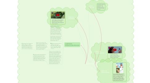 Mind Map: CIEL ECO-FLEX