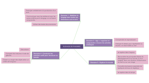 Mind Map: ELEVAGE DE PHASMES