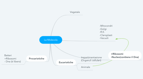Mind Map: La Molecola