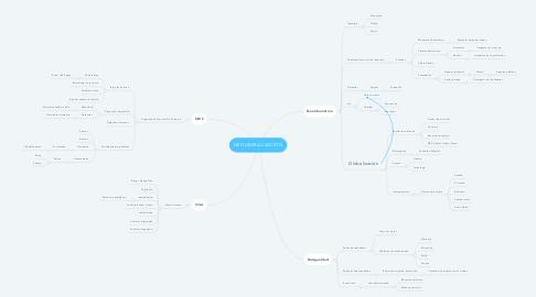 Mind Map: NEOLIBERALIZACIÓN