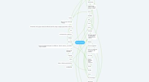 Mind Map: Tribus Urbanas