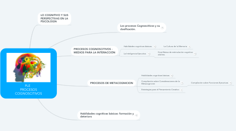 Mind Map: PLE   PROCESOS COGNOSCITIVOS