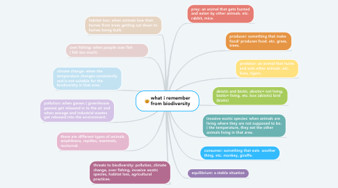 Mind Map: what i remember from biodiversity