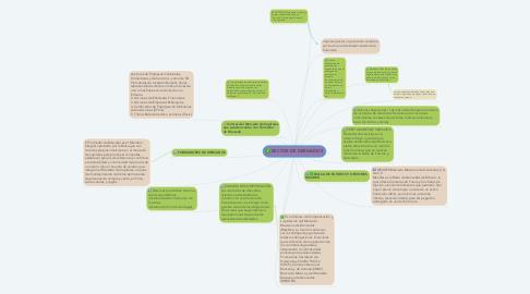 Mind Map: SECTOR DE DERIVADOS
