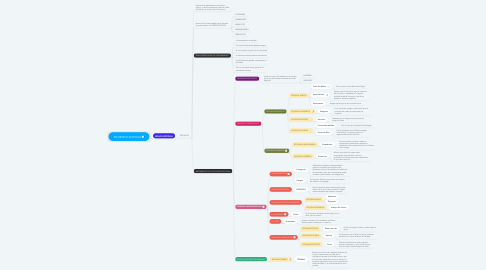Mind Map: FILOSOFIA ANTIGUA