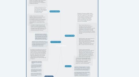 Mind Map: IMPORTANCIA DE LAS PLANTAS