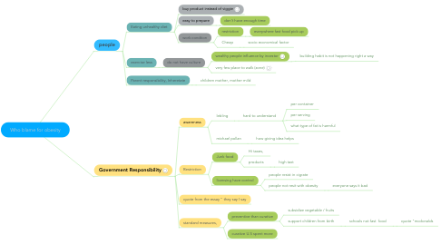 Mind Map: Who blame for obesity
