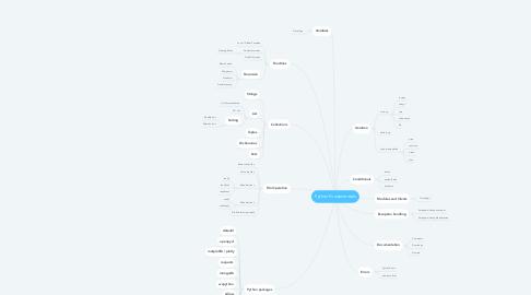 Mind Map: Python Fundamentals