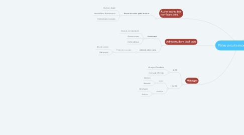 Mind Map: Pôles circuits économiques