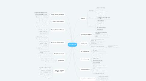 Mind Map: Barnekultur
