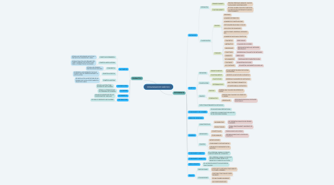 Mind Map: ORGANIZADOR GRÁFICO