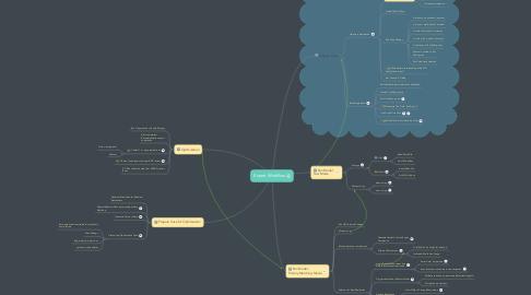 Mind Map: Expert Workflow