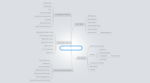 Mind Map: Early Hominids - B block