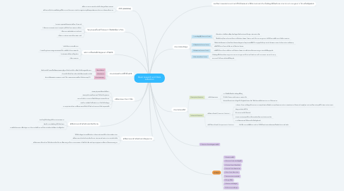 Mind Map: Basic research and Data collection