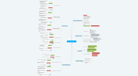 Mind Map: Interne analyse Geton B.V.