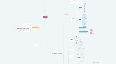 Mind Map: BAO BÌ