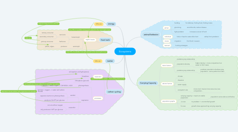 Mind Map: Ecosystems