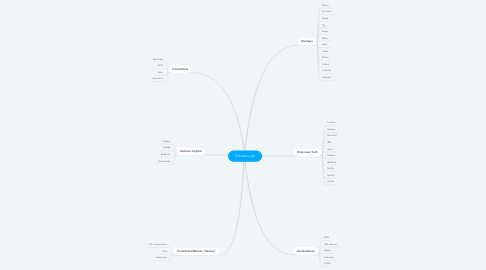 Mind Map: Tchuca's job