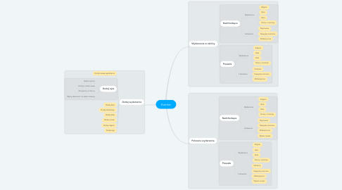 Mind Map: Eventer