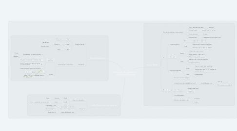 Mind Map: Riflettere, accompagnati, sull'Identità Virtuale
