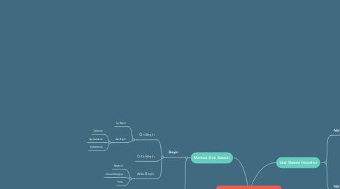 Mind Map: İNSANDA SİNİR SİSTEMİ
