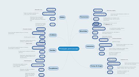 Mind Map: Principais protozooses