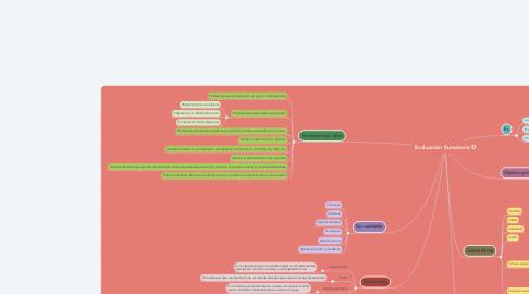 Mind Map: Evaluación Sumatoria