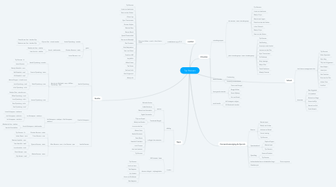 Mind Map: Tijn Roovers