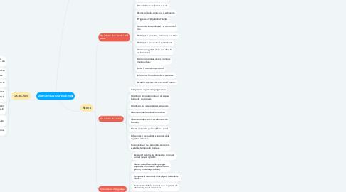 Mind Map: Elements del currículum