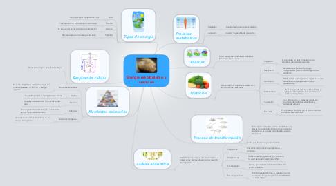 Mind Map: Energía metabolismo y nutrición