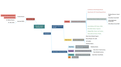 Mind Map: Zionsville Country Veterinary Clinic