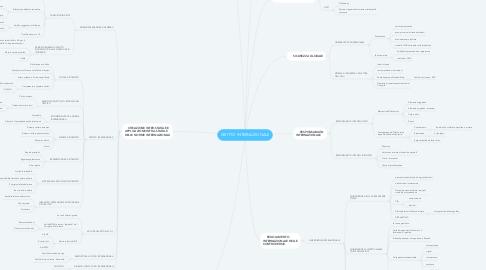 Mind Map: DIRITTO INTERNAZIONALE