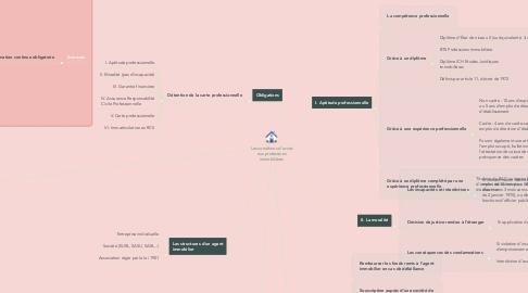 Mind Map: Les conditions d'accès aux professions immobilières