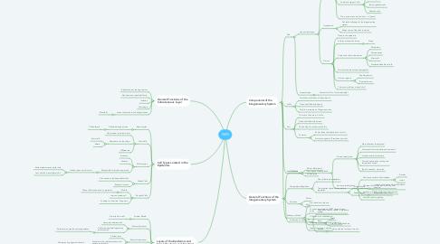 Mind Map: SKIN