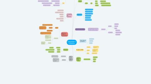 Mind Map: Competencia Educativa