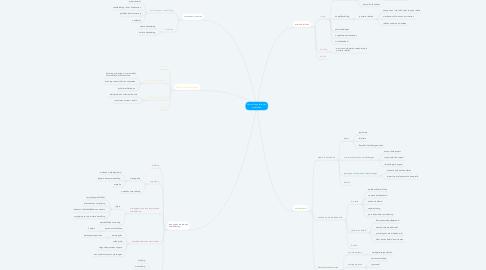 Mind Map: Samenleving feiten en problemen