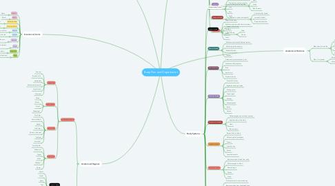Mind Map: Body Plan and Organization