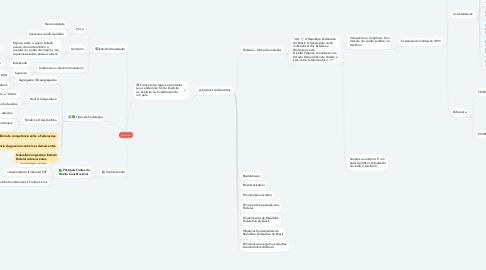 Mind Map: Constituição