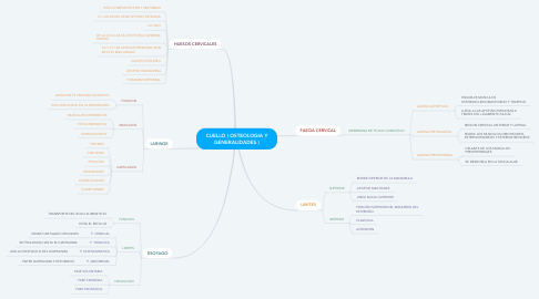Mind Map: CUELLO ( OSTEOLOGIA Y GENERALIDADES )