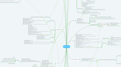 Mind Map: Geriontology