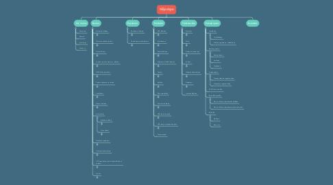 Mind Map: Mājaslapa