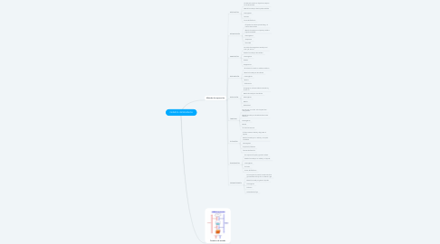 Mind Map: QUÍMICA INORGÁNICA