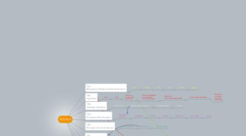 Mind Map: PCDM 4