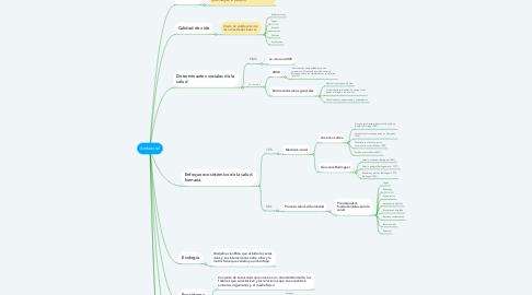 Mind Map: Ambiental