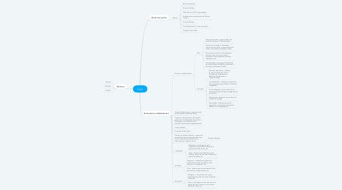Mind Map: École