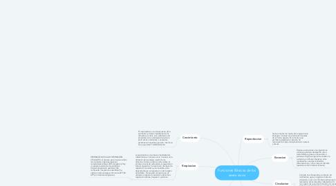 Mind Map: Funciones Básicas de los seres vivos