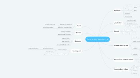 Mind Map: Social entreprenørskab 360