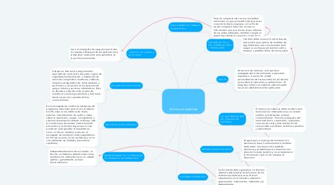 Mind Map: técnico en sistemas
