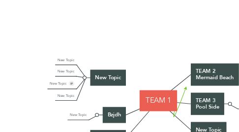Mind Map: TEAM 1