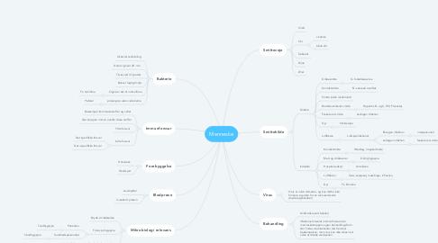 Mind Map: Menneske